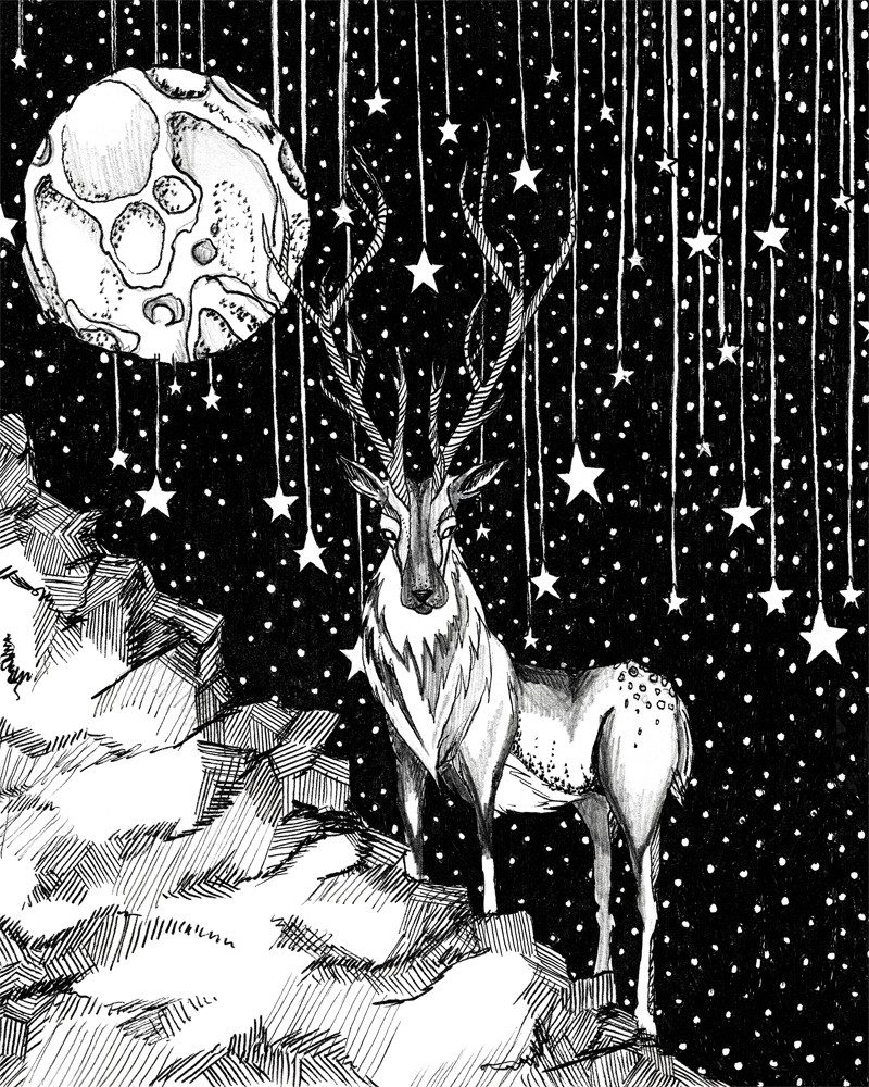 wunderkid tamzin riches pen and ink drawing of a deer under the moon called stag under the stars