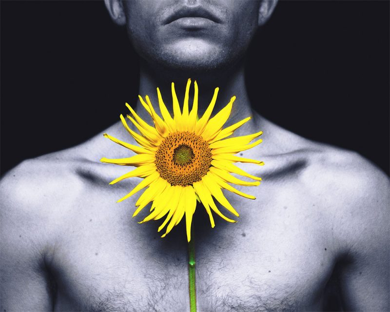 photograph of a yellow flower in front of a black and white body called sun in the dark