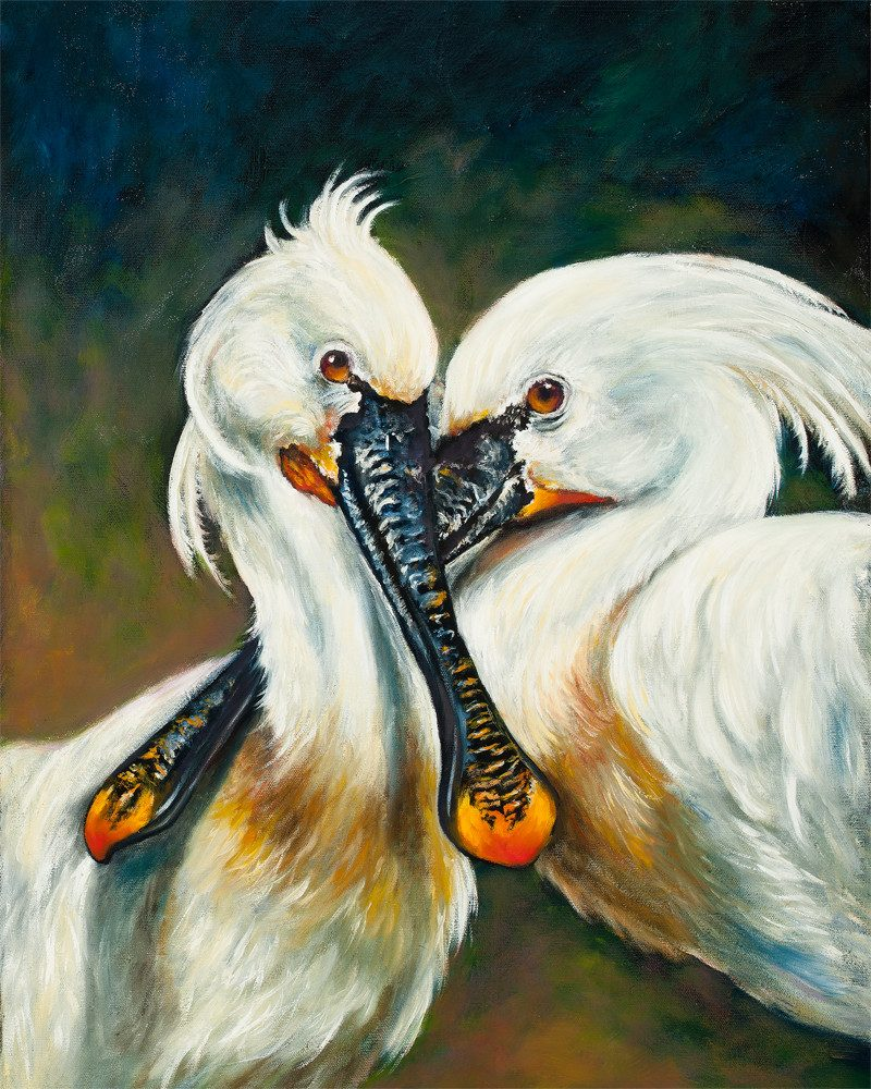 original painting of two eurasia spoonbills cuddling by wunderkid artist BROOKE THIVIERGE