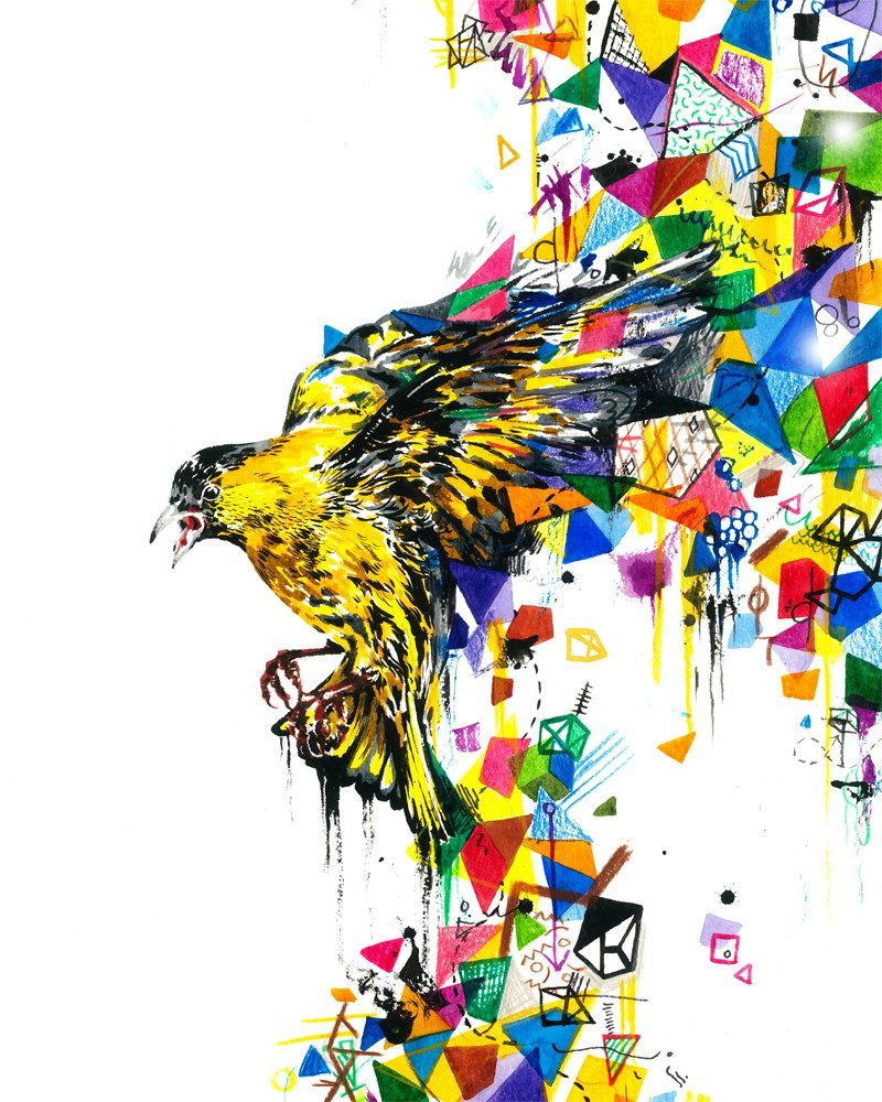 original abstract painting of a siskin with different shapes and colors coming out of the wings in a complete white background called blue bird by artist HARRY WOODGATE